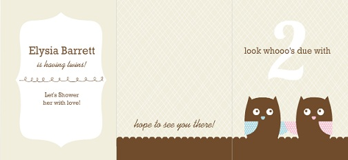 Due With Two Whimsical Owls Twin Baby Shower Invitation